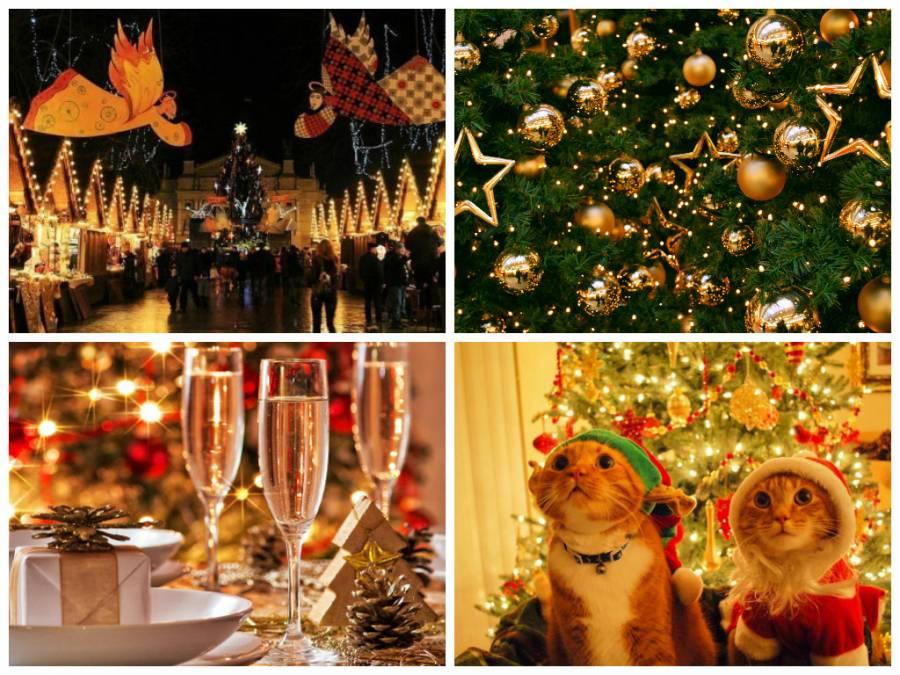 Де у Львові можна зустріти Новий рік: ТОП-4 святкових локацій