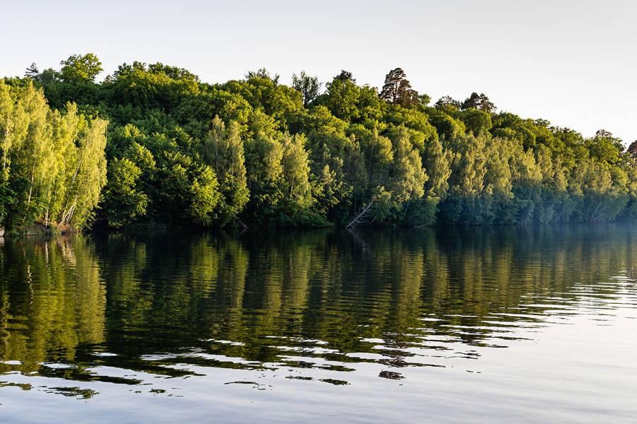 16 фактів про Житомир та Житомирську область