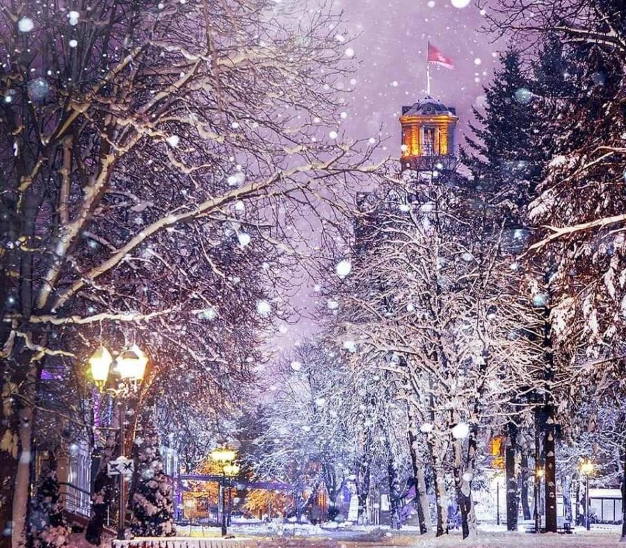 5 ідей для святкування Нового року у Вінниці