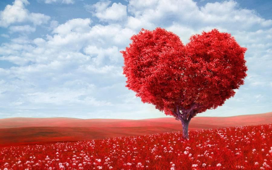 Романтичні місця України - тест до дня всіх закоханих