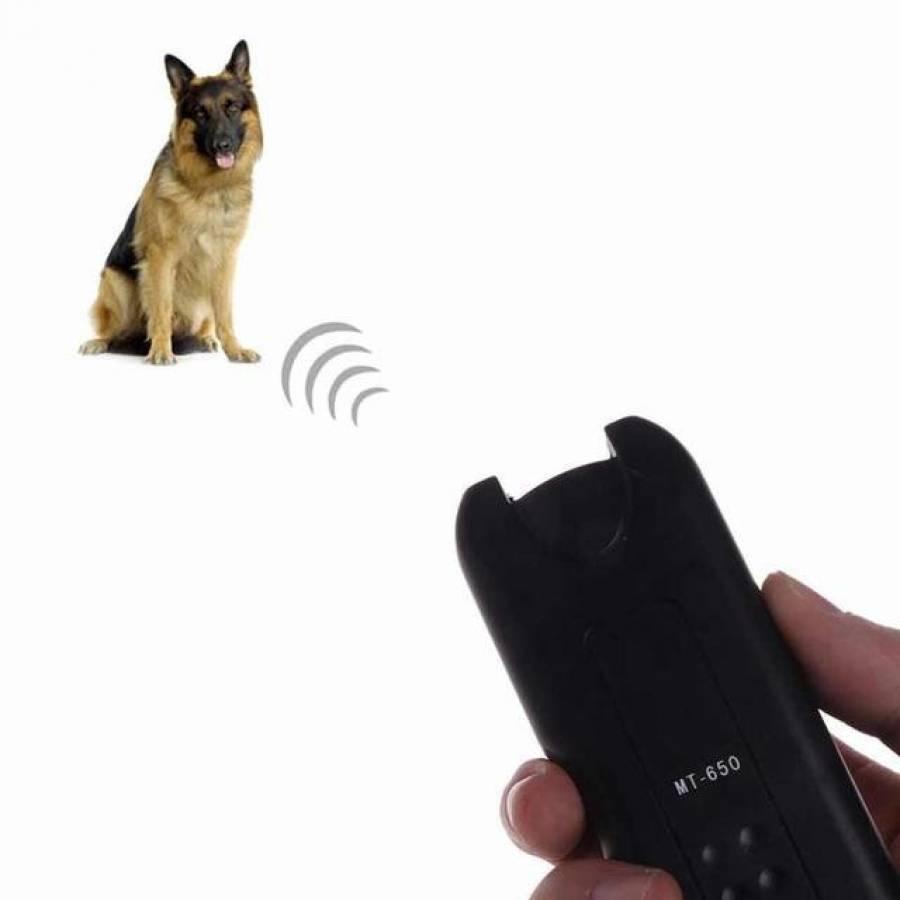 Отпугиватель собак: особенности функциональных аксессуаров