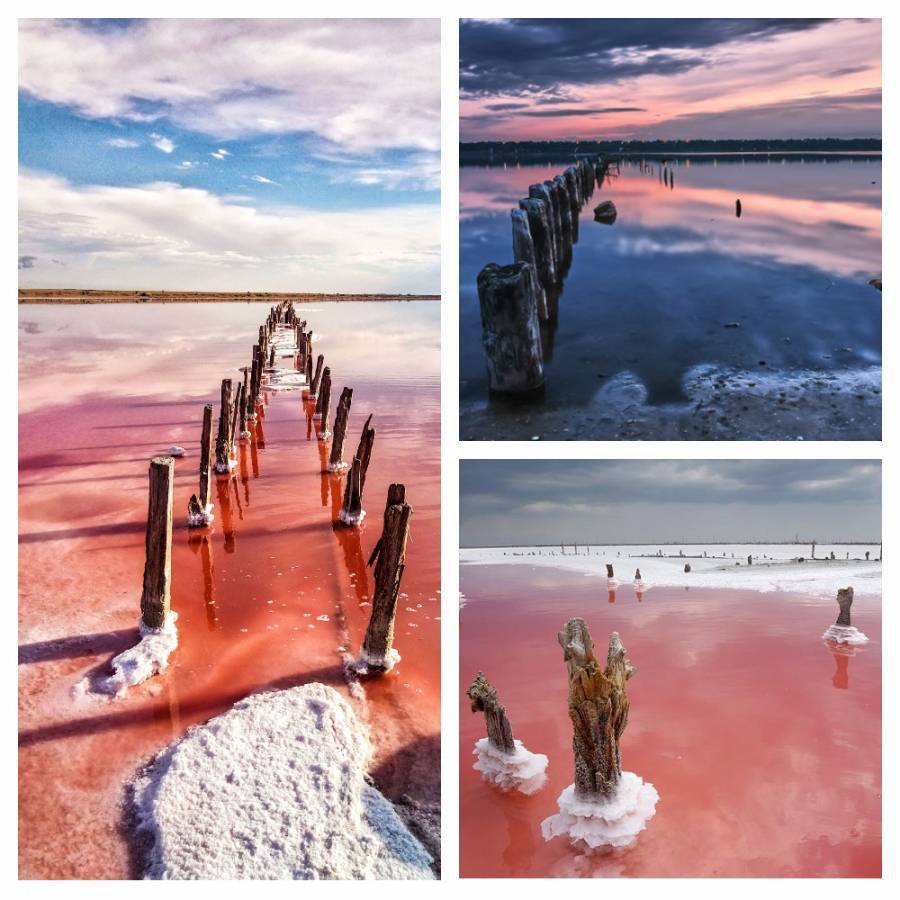 Неймовірна краса: ТОП-3 рожевих озер України