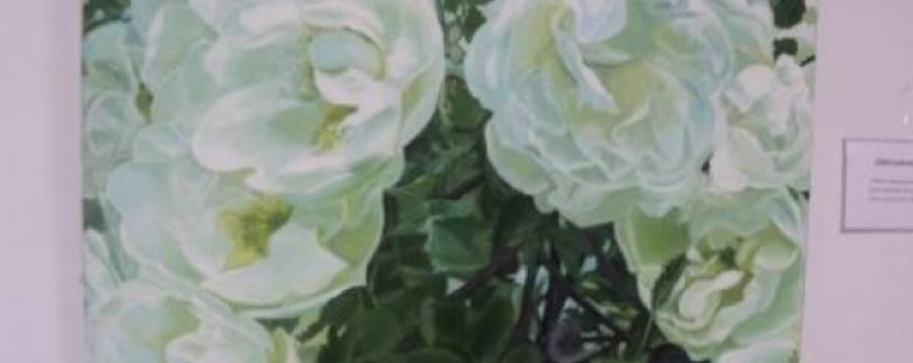 Виставка живопису вінничанки Валентини Матієнко