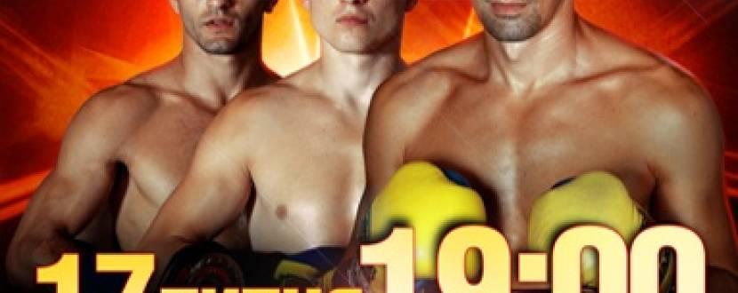 «АККО Інтернешнл»: Вечір професійного боксу