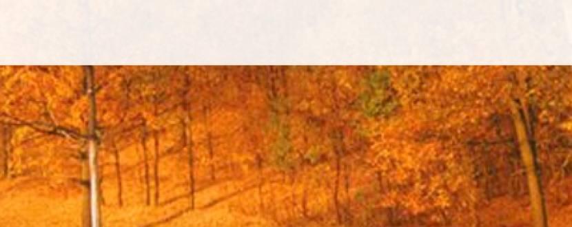 Осінь в Закарпатті