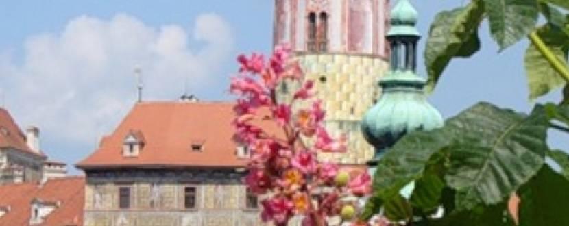 Подорож до весняної Європи