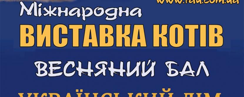 Міжнародна виставка породистих котів в Українському Домі