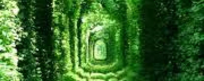 Тунель кохання - Тараканів Форт - Замок Дубно