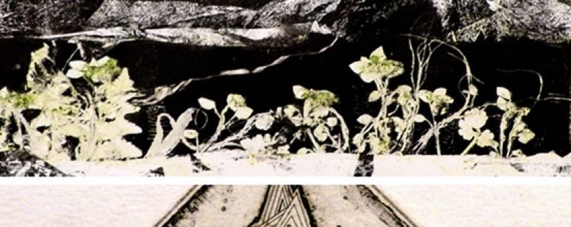 Виставка «Невидимий сад» Маргарити Журунової та Богдана Локатира