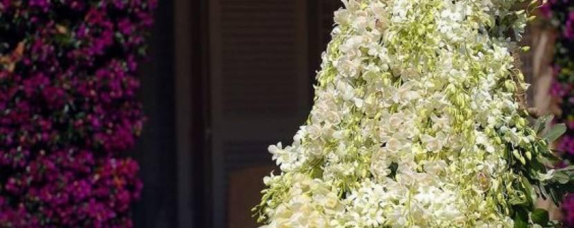 """Співоче поле: виставка квітів """"Місто майбутнього"""""""