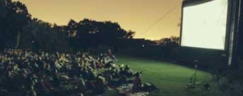 Співоче поле: Ночі Кіно просто неба