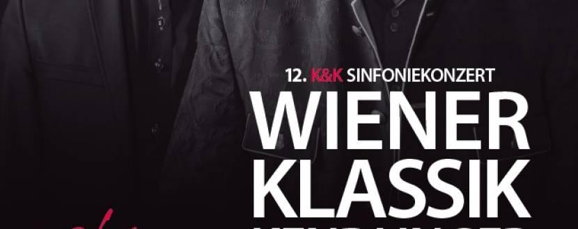 """Вечір """"Віденської класики"""""""