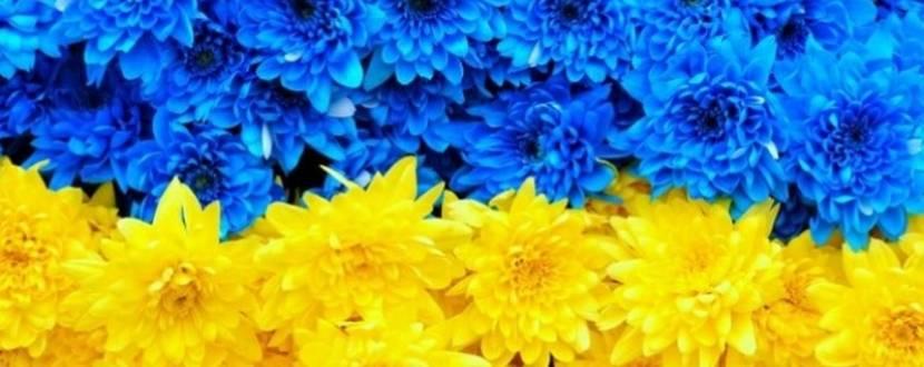 В Києві створять український прапор з квітів для Книги рекордів Гінеса