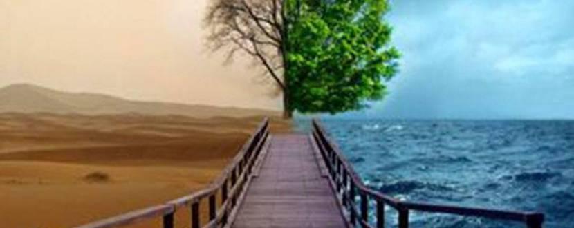 Обучение Гештальт терапии для Работы и Жизни, вед. Высочанская И., Гуливатая С.