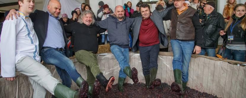 VII Свято сиру і вина у Львові