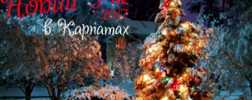 Новий рік в Карпатах з тур-клубом Бідняжка