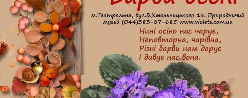 """Выставка фиалок """"Барви осені"""""""