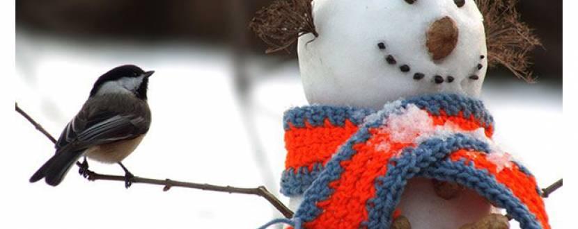 Шоу-програма «В пошуках снігу»