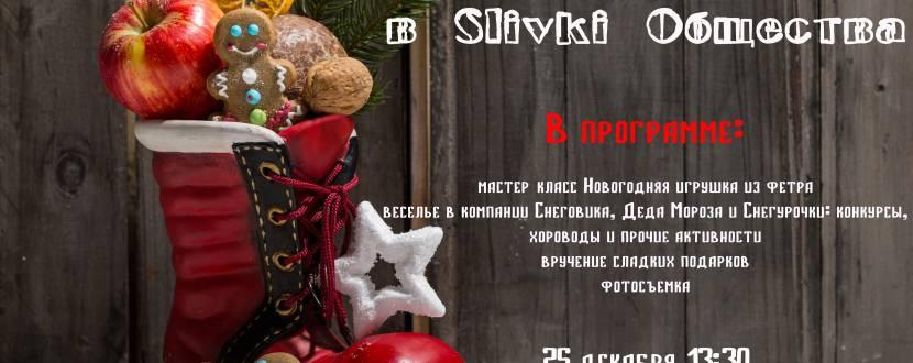Новогодний праздник для детей в Slivki Общества