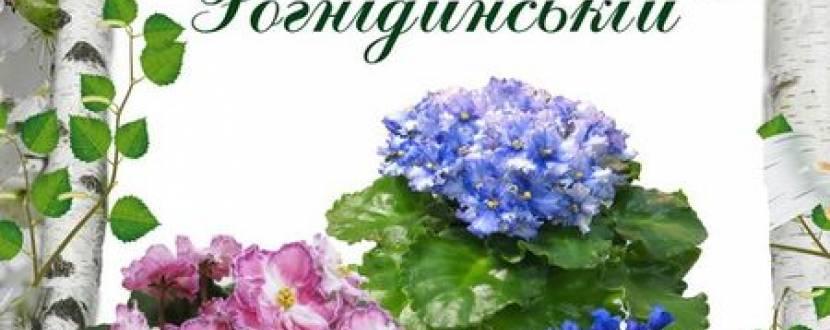"""Виставка квітів """"Фіалки на Рогніденській"""""""