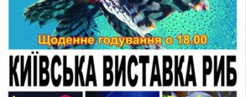 Київська виставка риб у Хмельницькому
