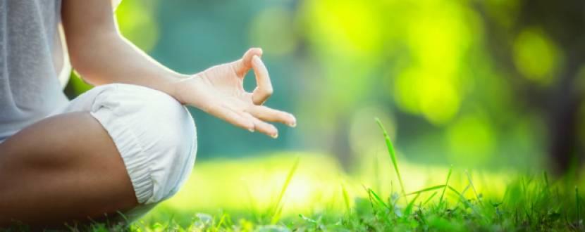 Міжнародний день йоги у Вінниці