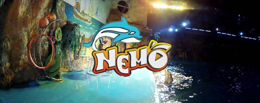 Дельфинарий Немо. Романтическое ночное шоу