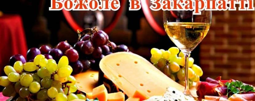 Фестиваль молодого вина Божоле в Закарпатті