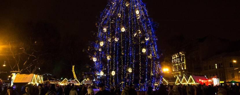 Відкриття Різдвяного ярмарку, ялинки та ковзанки