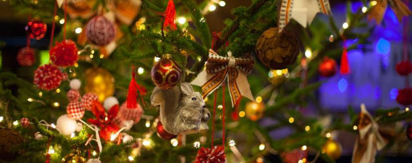 Урочистість Різдва Господнього