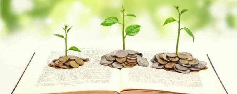 Фінансова грамотність: Банки, кредити, сімейний бюджет