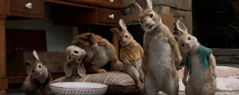 Комедійний мультфільм - Кролик Петрик