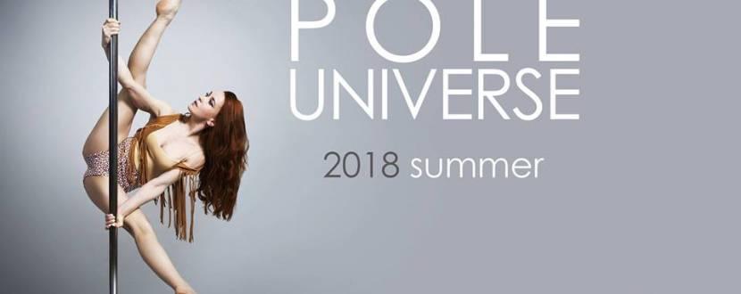 Чемпионат Pole Universe 2018 Винница 2-3 июня