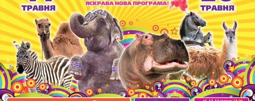 Будапештський цирк у Тернополі. Нова програма