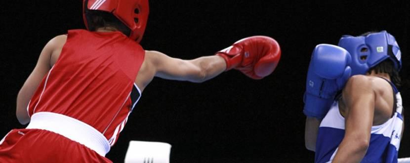 Матчева зустріч з боксу: Житомир - Бровари