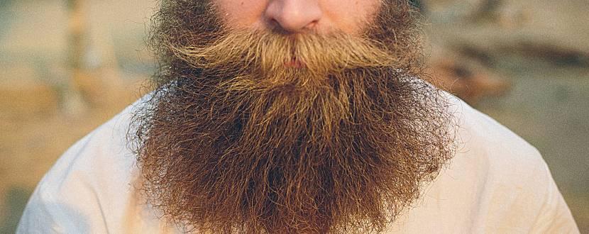 Житомир з бородою