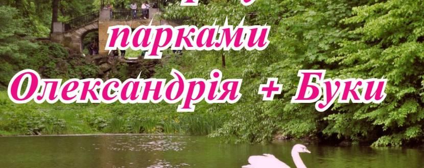 Буки+Олександрія