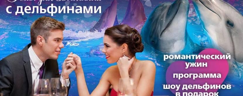 Ужин для влюблённых с дельфинами
