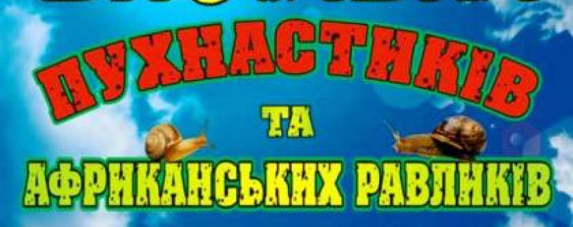 Виставка пухнастиків та африканських  равликів у Тернополі