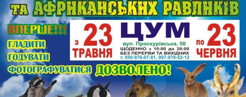Виставка пухнастиків та африканських равликів. Розіграш квитків