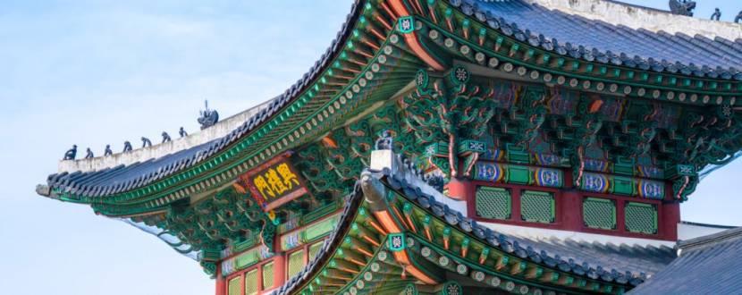 Korean Days in Zhytomyr