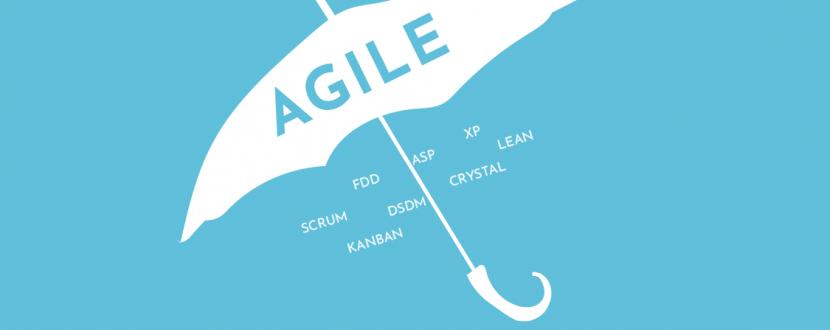 Гнучке управління проектами Agile