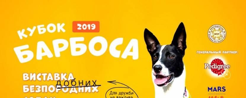 Кубок Барбоса 2019 - Виставка безпорідних собак