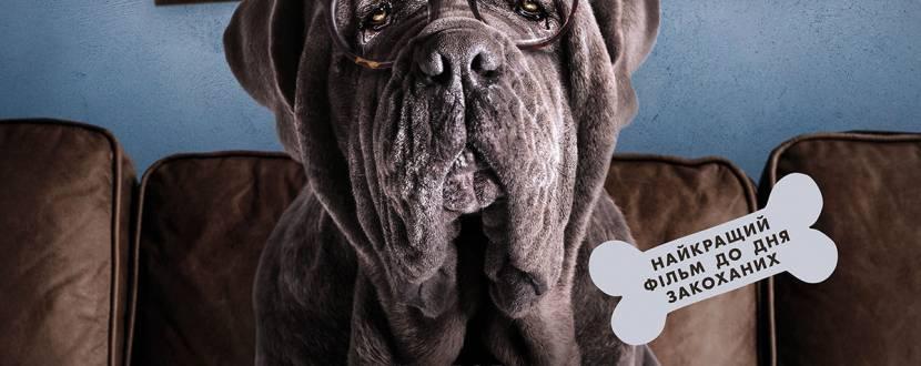 Мій пес Ідіот
