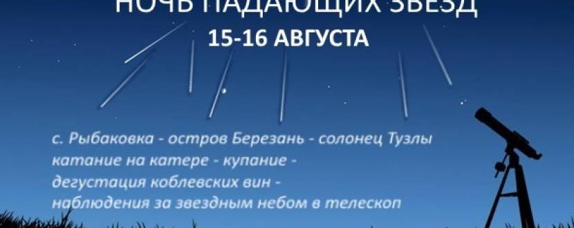 Экскурсия Ночь падающих звёзд - путешествие с астрономией