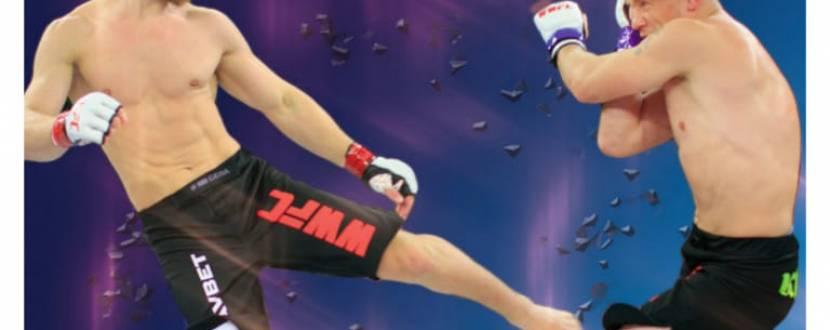 Відкритий чемпіонат області зі змішаних бойових мистецтв (UFMMA)