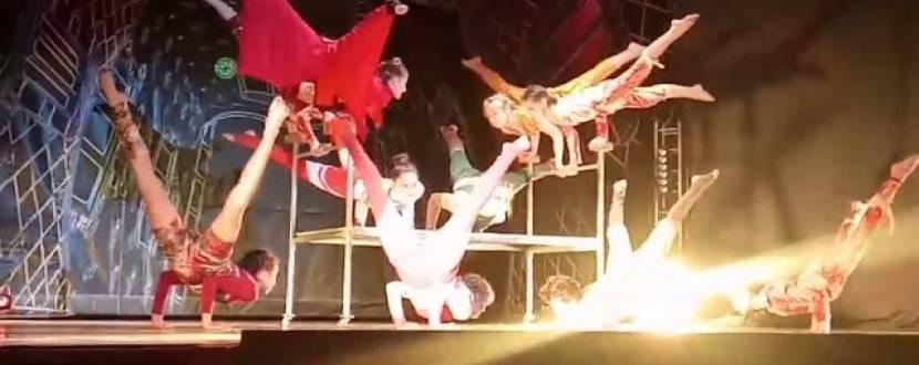 WISH. Театрально-цирковое шоу