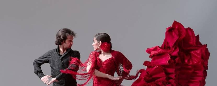 "Шоу ""To the rhythm of flamenco"""