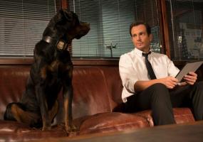 Сімейна пригодницька комедія «Поліцейський пес»