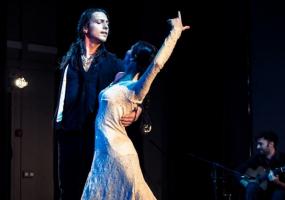 FlamencoLive с программой «Hoffmann Flamenco Dreams»
